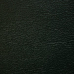 Premiere Forest | Leather Supplier | Danfield Inc. Leather