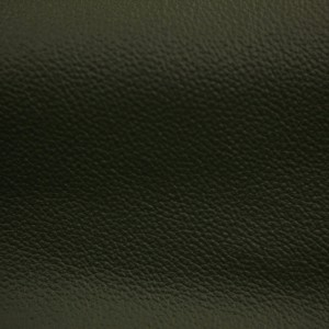 Discovery II Emerald | Aircraft Upholstery Leather