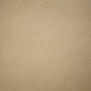 Moondust Butter Cream | Pearlized Leather | Danfield Inc., Leather
