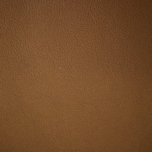 Moondust Gold | Pearlized Leather | Danfield Inc., Leather