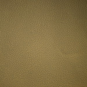 Moondust Moss | Pearlized Leather | Danfield Inc., Leather