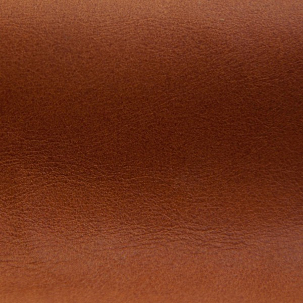 Pampa Turmeric | Vegetable Tanned Leather | Danfield Inc.
