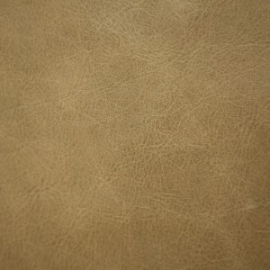 Rage Kiwi | Vegetable Tanned Leather | Danfield Inc.