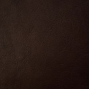Rage Tigerwood | Vegetable-Tanned Leather | Danfield Inc.