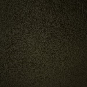 Western Green Moss | Leather Supplier | Danfield Inc., Leather