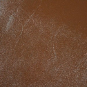 Delano Orion | Upholstery Leather | Danfield Inc., Leather